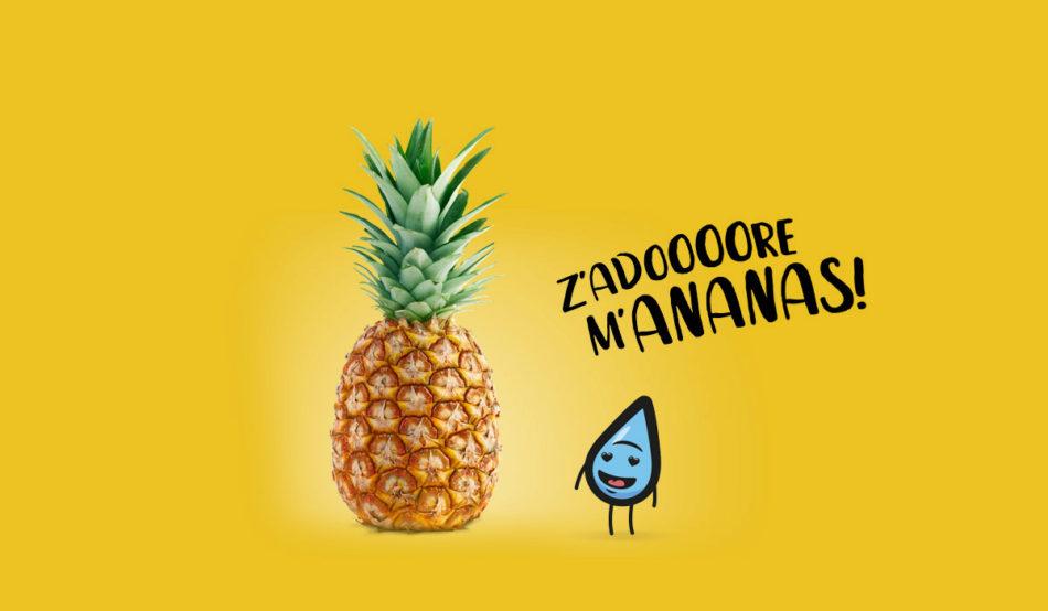 Saveur ananas